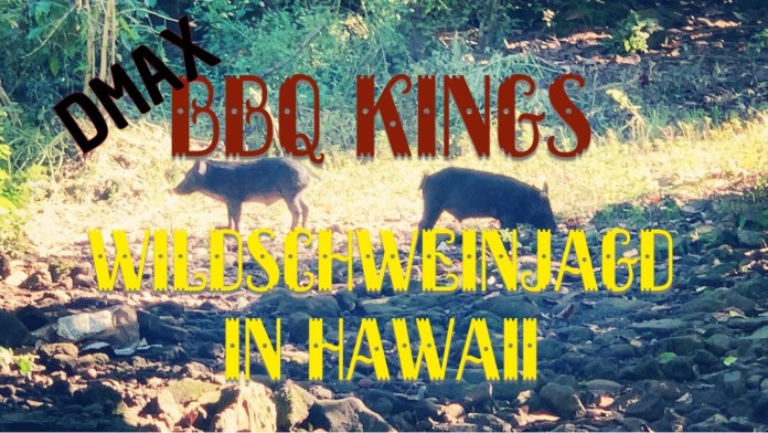 BBQ Kings in Hawaii