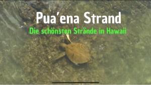 Puaena Strand North Shore