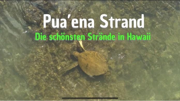 Puaena Strand im Norden von Oahu – Die schönsten Strände in Hawaii