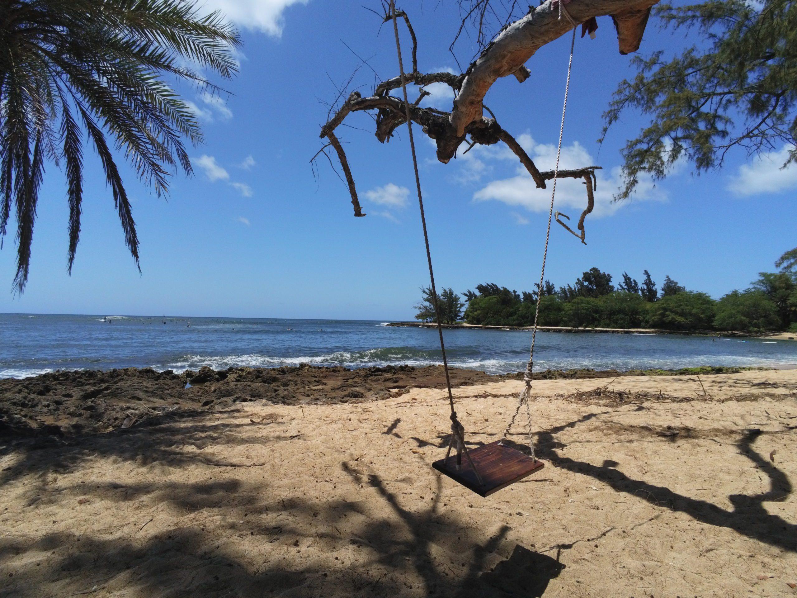 Schaukel mit Meerblick Strand North Shore Oahu Hawaii