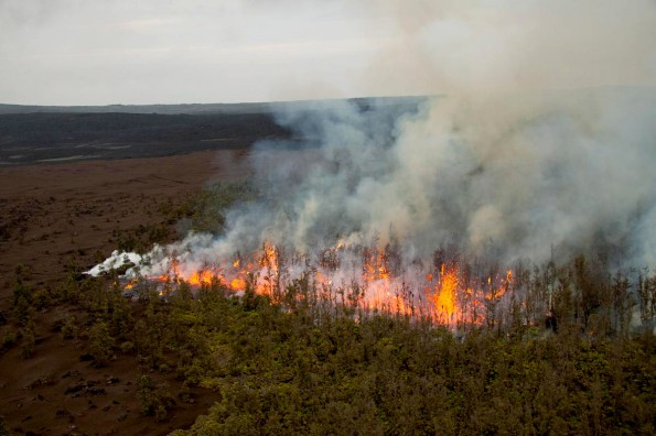 New fissure eruption southwest of Pu'u 'O'o between Pu'u 'O'o and Napau crater. Spatter is reaching 15-20 meters into the air, above the trees.