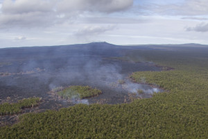 June 17, 2014, photo showing smoke produced by the incursion of the Kahauale'a 2 flow into native forest 7.0 km (4.3 miles) northeast of Pu'u 'Ō'ō , which is visible in the background. Photo courtesy of USGS/HVO