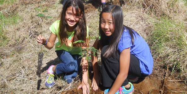 Punahou students lend a hand at the Keauhou Bird Conservation Center. (Photo special to Hawaii 24/7)