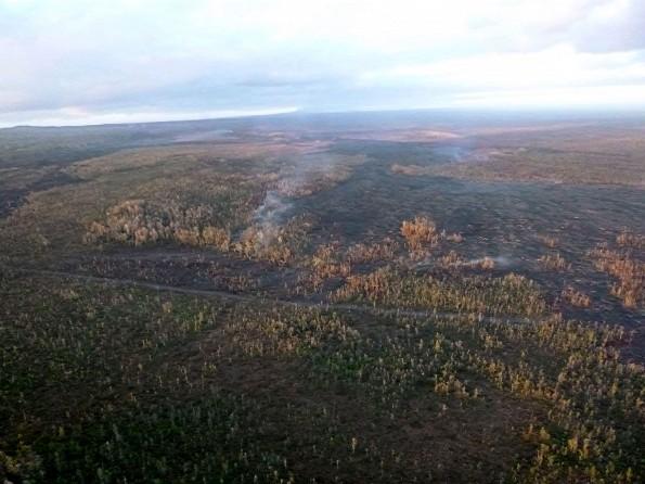 The Kilauea June 27th Lava Flow looking upslope past the firebreak Wednesday morning, February 18, 2015. Photo courtesy of Hawaii County Civil Defense