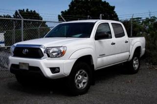 Dolores Borja-Valle's pickup truck