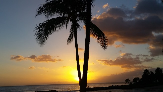 hawaii vacation package deal