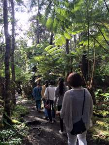 experience hawaii workshop