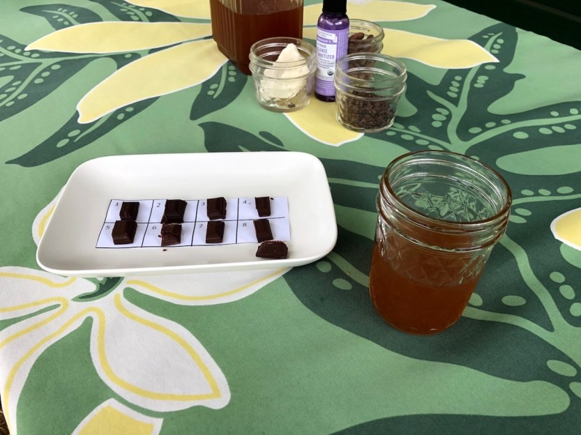 chocolate tasting, cacao tea, honoka'a chocolate co.