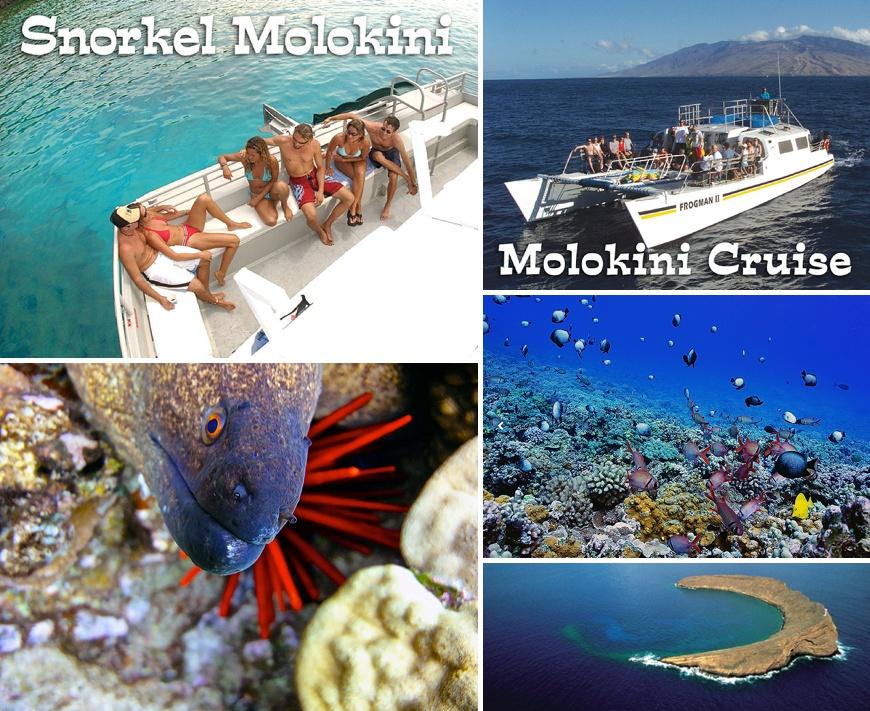 Frogman Molokini Cruise