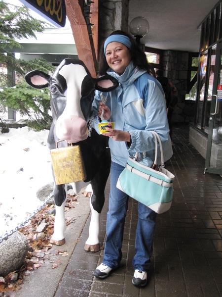 Cows in Whistler Village