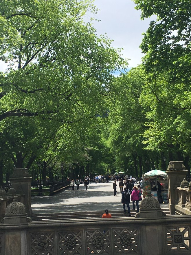 NYC Itinerary: Central Park