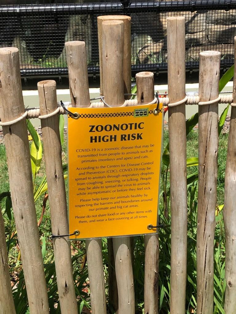 Pandemic - A Zoonotic Disease