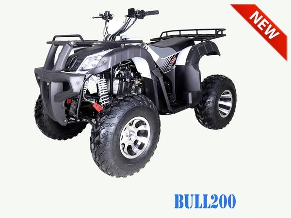 Tao Motor Bull 200 ATV