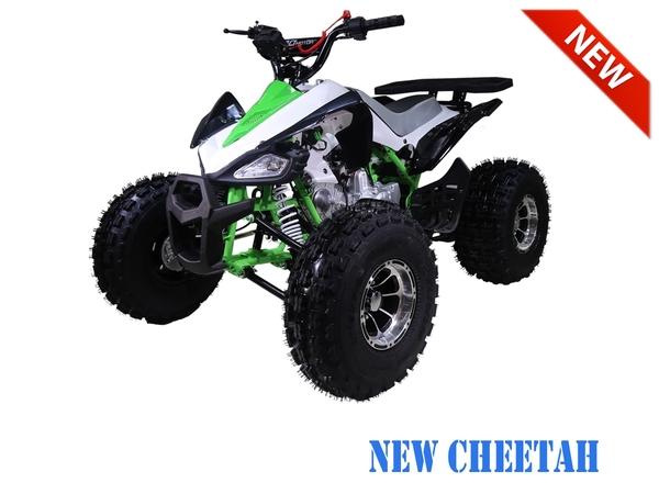 Tao Motor New Cheetah ATV - Hawaii
