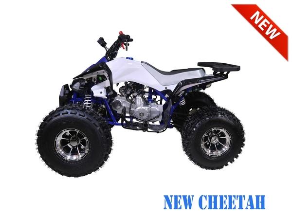 Tao Motor New Cheetah ATV Hawaii