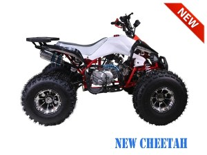 Tao Motor New Cheetah ATV