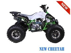 Tao Motor New Cheetah ATV