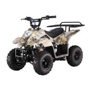 Tao Motor Boulder B1 110cc ATV