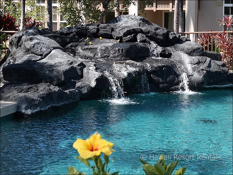Waikoloa Colony Villas large pool and gurgling lava rock