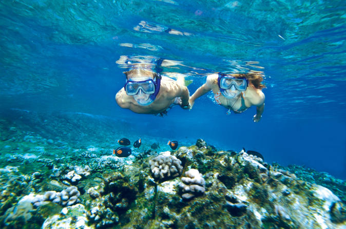 Molokini And Turtle Arches Snorkeling Trip on Maui