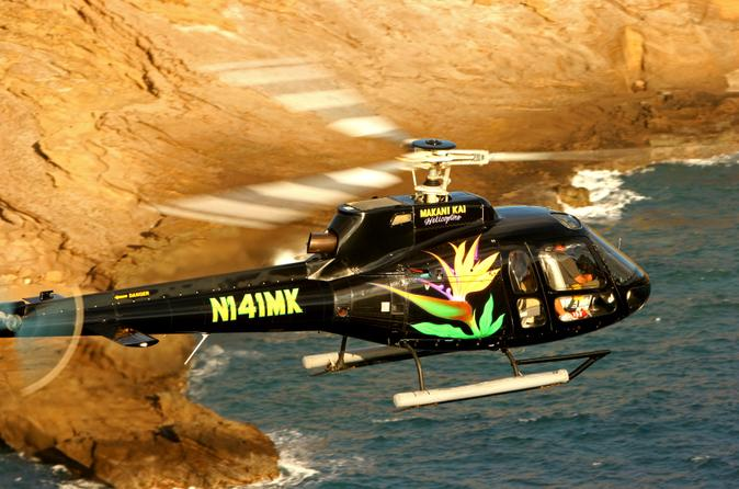 Oahu Super Saver: Helicopter Tour plus Dolphin Snorkel Adventure
