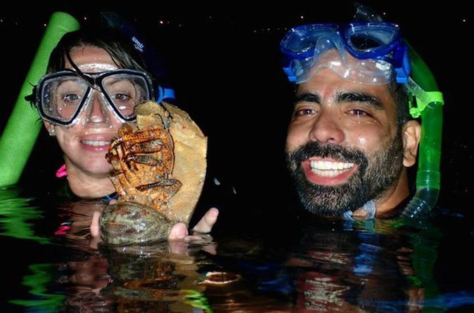 Private Shoreline Night Snorkel in Maui on Maui