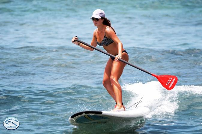 Stand-Up Paddleboard Lesson on the Big Island on Hawaii