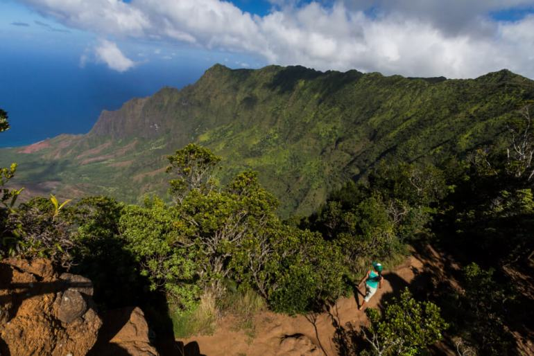 Top 25 Things to do in Poipu, Kauai featured by top Hawaii blog, Hawaii Travel with Kids: Kokee State Park is a popular place on Kauai for bird watching