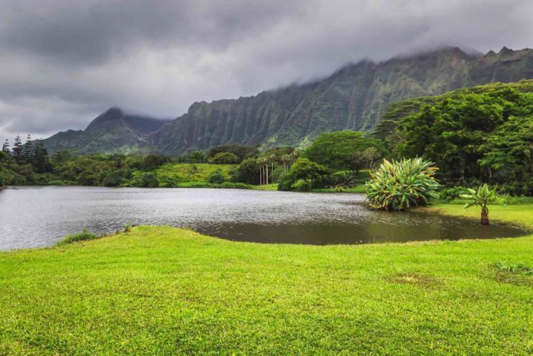 Top 6 Free Things to Do on Oahu featured by top Hawaii blog, Hawaii Travel with Kids: Hoomaluhia Botanical Garden is a free thing to do on Oahu and a popular Oahu photography spot.