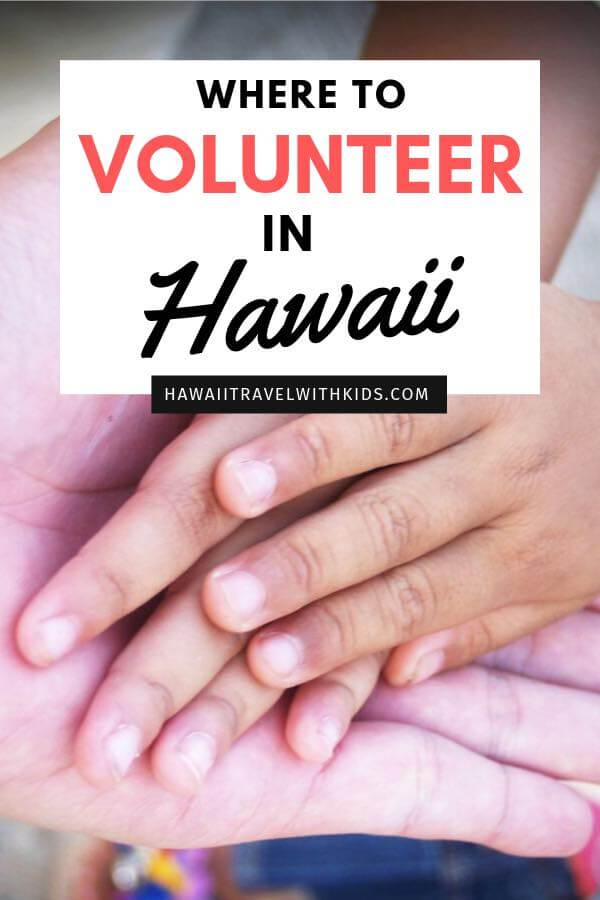 Heading to Hawaii in December? Find out the best places to volunteer in Hawaii this holiday season. Show your kids how to give back this holiday season.
