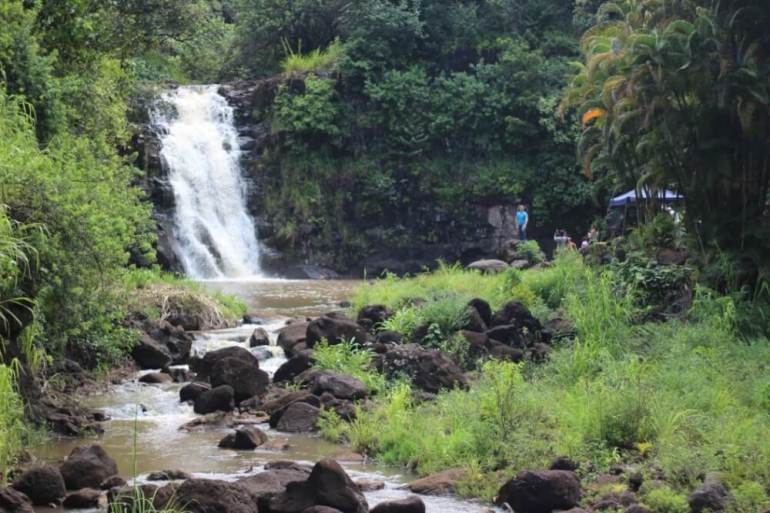 12 Breathtaking Oahu Waterfall Hikes featured by top Hawaii travel blog, Hawaii Travel with Kids | Waimea Falls is a popular Oahu waterfall | waimea falls hikes