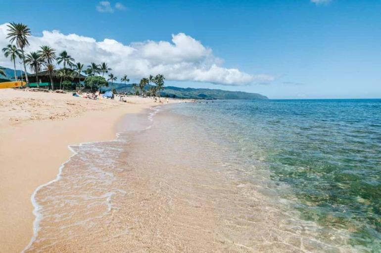 The Best 7 North Shore Oahu Beaches featured by top Hawaii blog, Hawaii Travel with Kids: Haleiwa Beach Park is a popular North Shore Beach