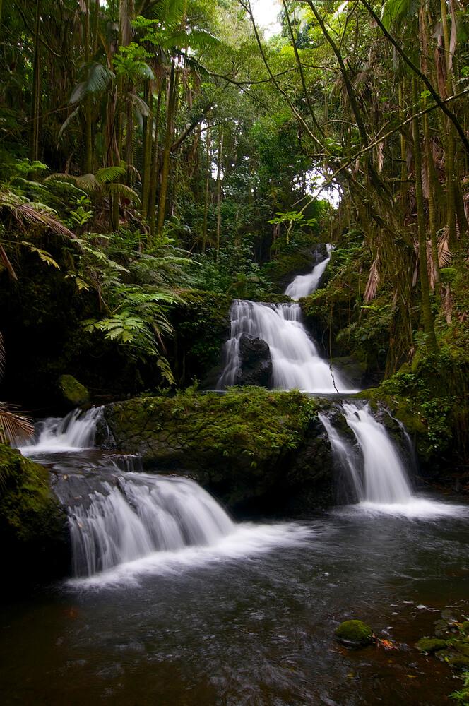 Top 7 Big Island Hawaii Waterfalls you Should Visit featured by top Hawaii blog, Hawaii Travel with Kids: Onomea Falls on the Big Island