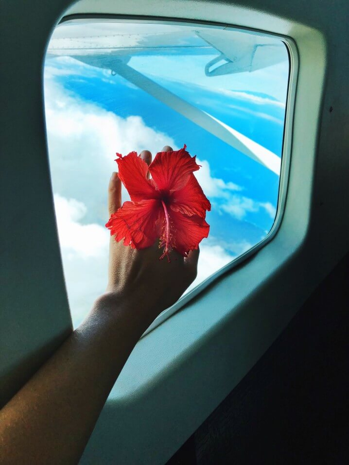 Island hopping in Hawaii is a great way to see more than one island. Image of someone holding a hibiscus flower in front of an airplane window.