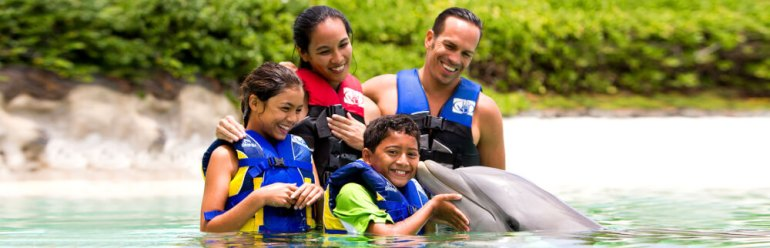 50 Best Places to Visit in Hawaii with your Family featured by top Hawaii blog, Hawaii Travel with Kids: Sea Life Park Dolphin Encounter Experience on Oahu.