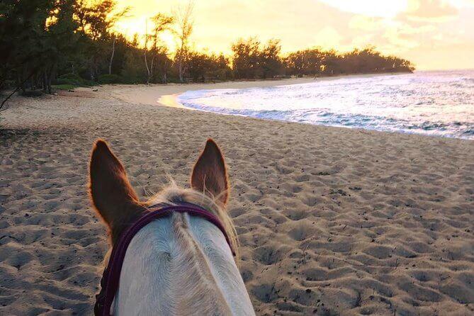 Top 15 Things to do on Your Hawaii Honeymoon featured by top Hawaii blog, Hawaii Travel with Kids: Take a romantic horseback ride on your Hawaii honeymoon