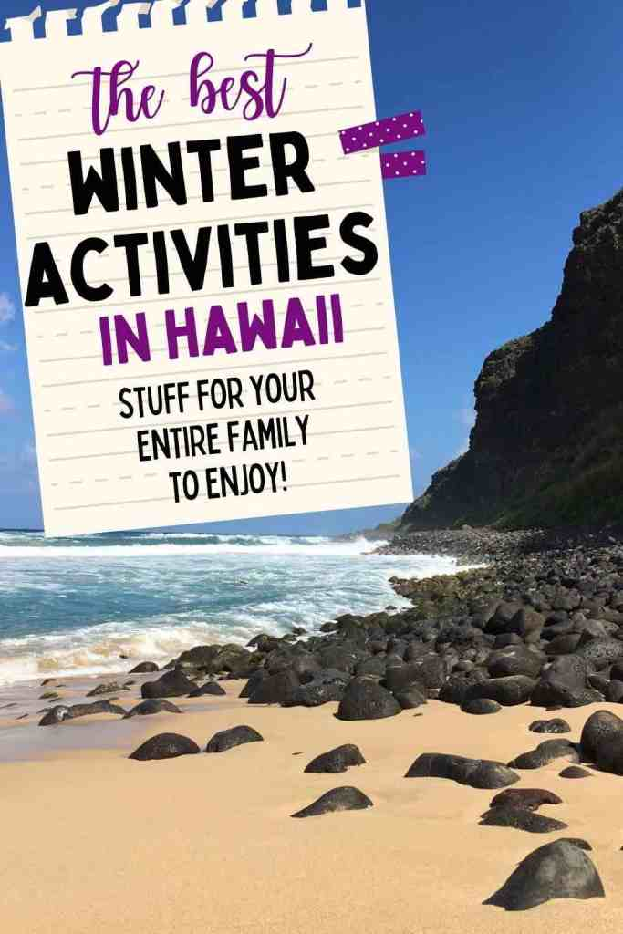 Looking for the best things to do in Hawaii in winter? You've come to the right place!
