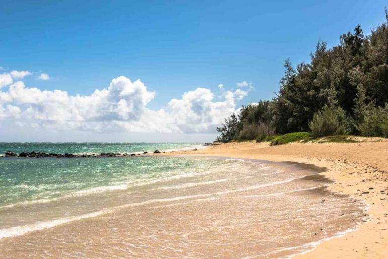 One of the best cheap things to do on Maui is head to the beach! Image of Kanaha Beach Park with a sandy beach, green water and trees in the background.
