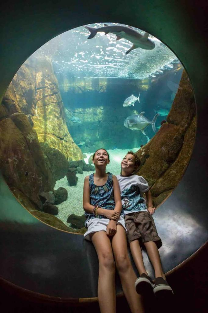 Waikiki Aquarium is one of the best Hawaii tourist attractions for families. Image of two kids sitting in front of a round window into an aquarium exhibit.