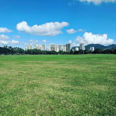 Kapiolani Park by Hawaii Walks Walking Tour Company