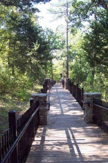 Cedar Falls Overlook Trail Petit Jean State Park Arkansas