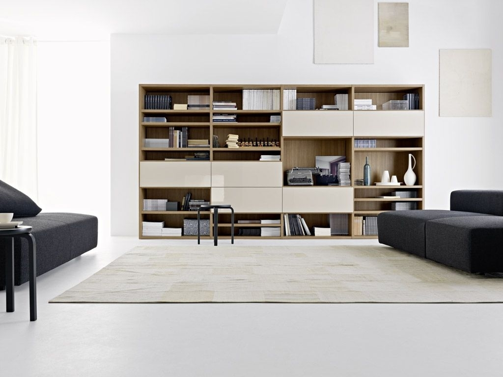 Living room storage  TOP 25 ideas of 2017  Hawk Haven