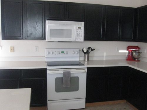 Black Kitchen Cabinets And White Appliances Hawk Haven