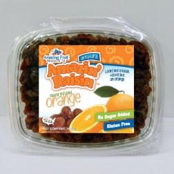 Orange 16 oz. Product Photo
