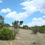 48 Acres Views Property