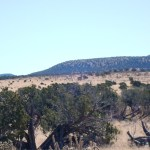 234 acres near Corona NM