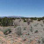 30 Acres 360 Degree Views