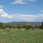 Valentine Ranch Liquidation