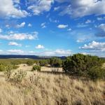 40 Acres Beautiful Land