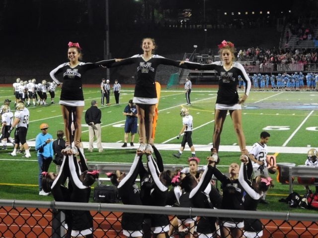 WRHS Cheer Team 16-17